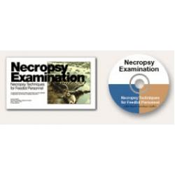 Necropsy Examination