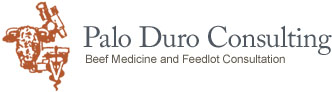 Palo Duro Consulting