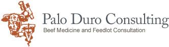 Palo Duro Consulting